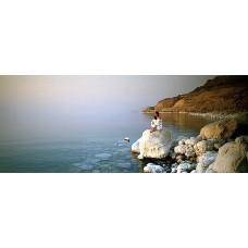 Натуральная косметика Мертвого моря